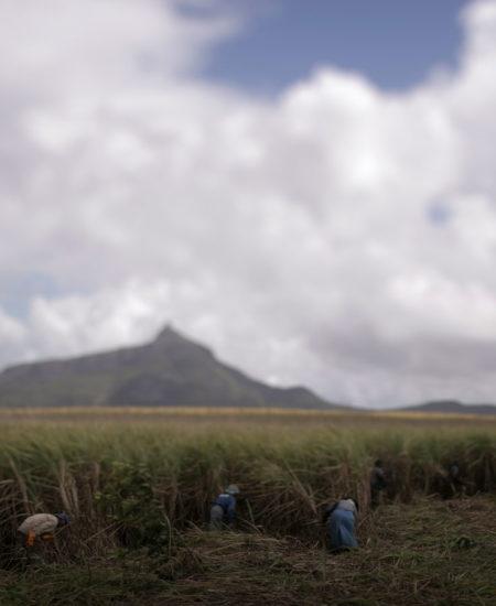 Wedding in Mauritius , Giordano Benacci Wedding Destination Photography